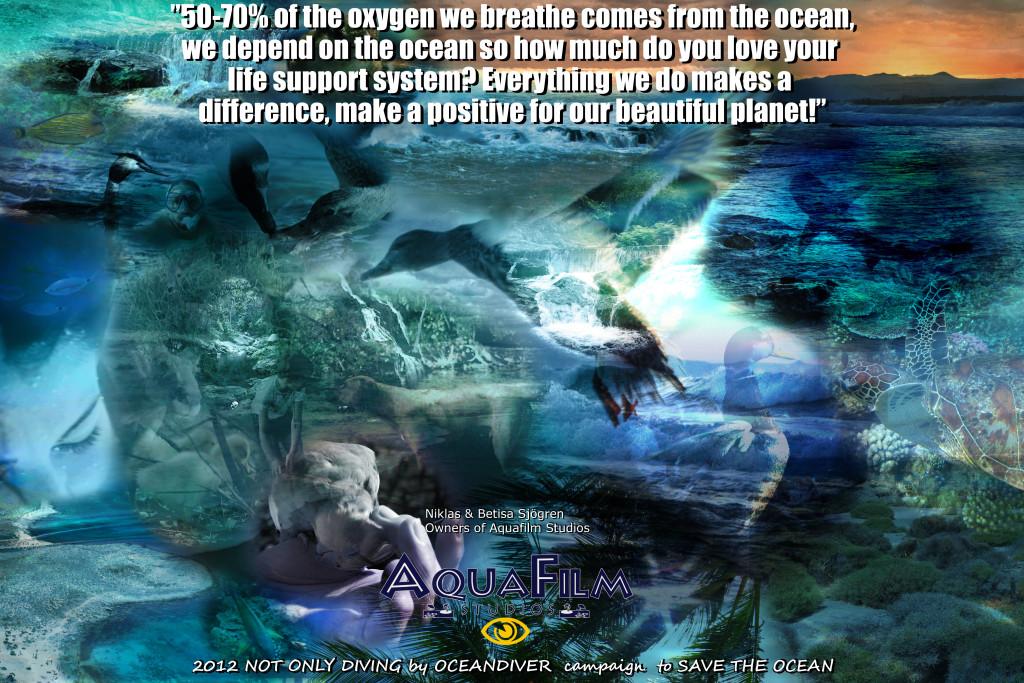 Un mare di plastica negli oceani, un emergenza troppo spesso taciuta