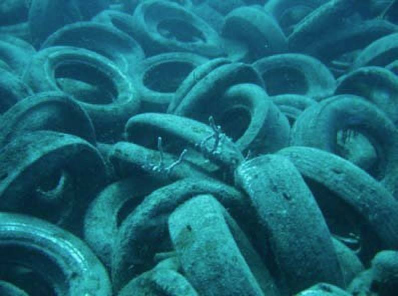 tires on the bottom at Fort Lauredale