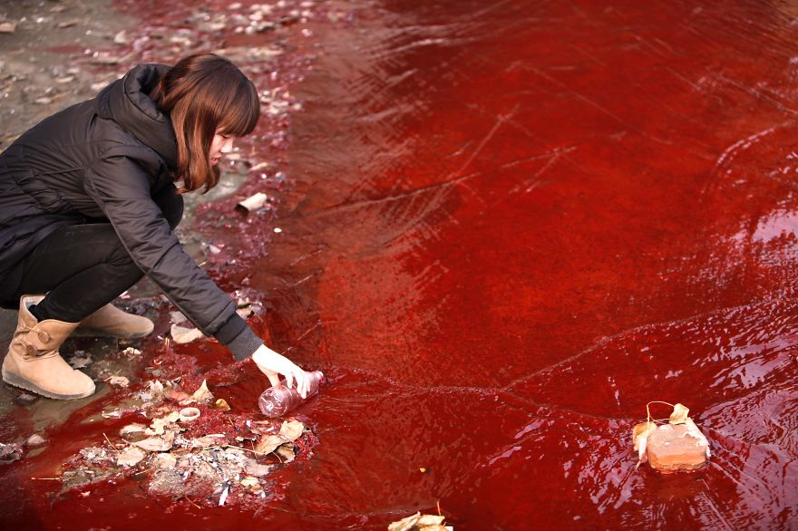 This picture taken on December 13, 2011 shows a woman collecting a sample of the red polluted water flowing from a sewer into the Jian River in Luoyang, north China's Henan province. The cause of the river becoming apocalyptic in character was red dye being dumped into the city's storm water pipe network, by two illegal dye workshops,the Luoyang Municipal Environmental Protection Bureau said on December 14, 2011, as authorities said they were working to shut down the workshops, and to disassemble the workshops' machinery. AFP PHOTO CHINA OUT