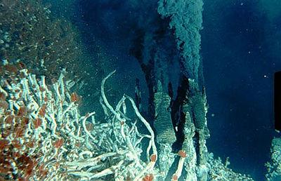 Questa immagine ha l'attributo alt vuoto; il nome del file è 400px-Hydrothermal-vent.jpg
