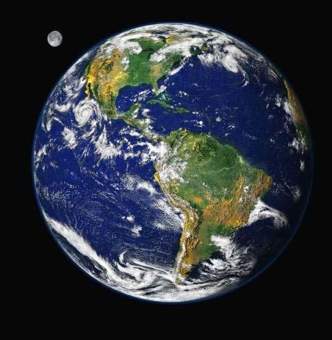 L'inquinamento marino: cause ed effetti ... che fare? di Andrea Mucedola
