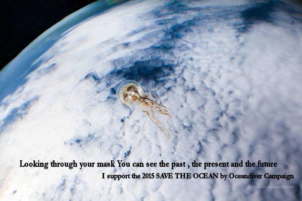 Non dirlo, Fallo!!!  Piccoli passi per salvare il mare e la nostra specie