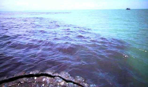 inquinamento alto mare