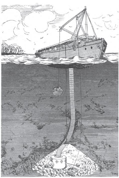 1 - 1915 GeorgeWilliamson_drawing wikipedia
