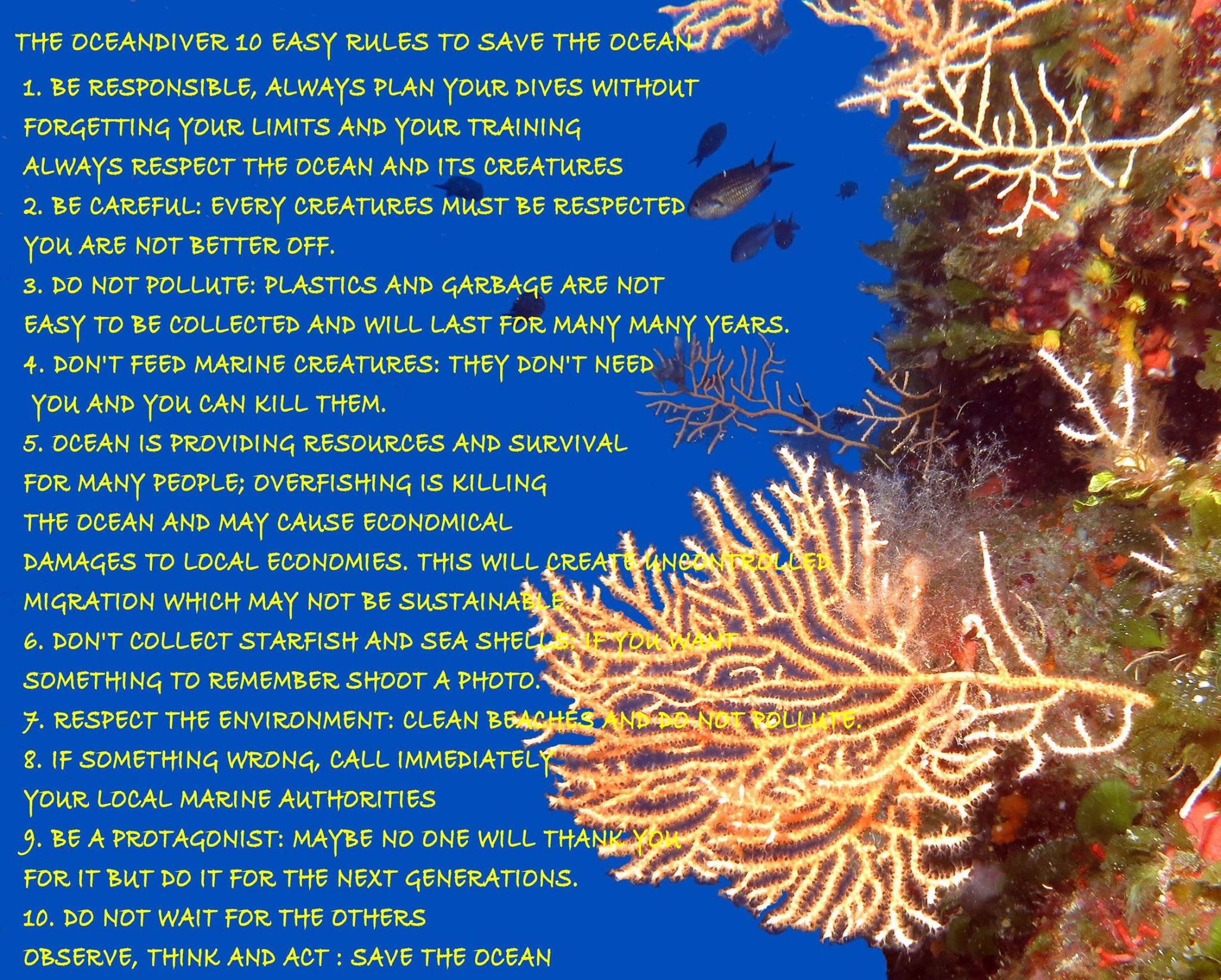 10 Easy rules to save the ocean by Oceandiver to be printed and/or shared
