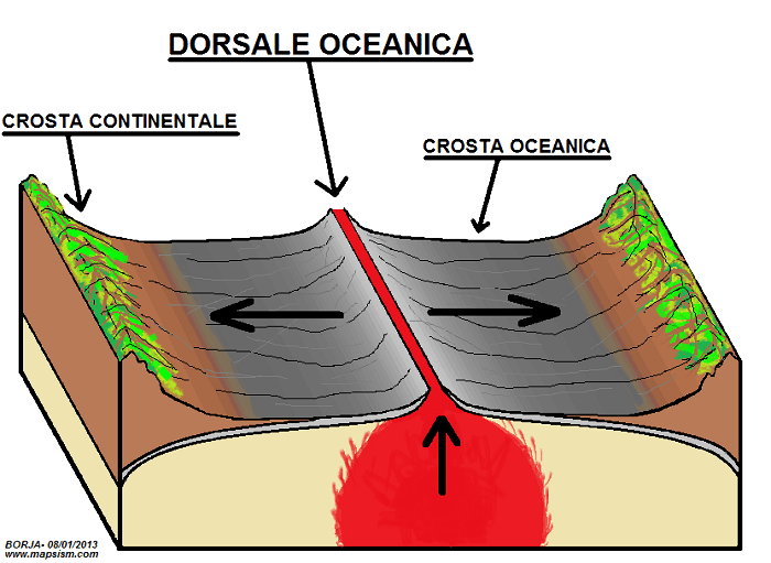 dorsali-oceaniche