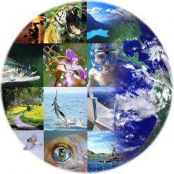 Tutela della biodiversità, impegno globale e sfide future di Pietro Minei
