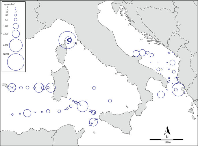 The Mediterranean Plastic Soup, synthetic polymers in Mediterranean surface waters