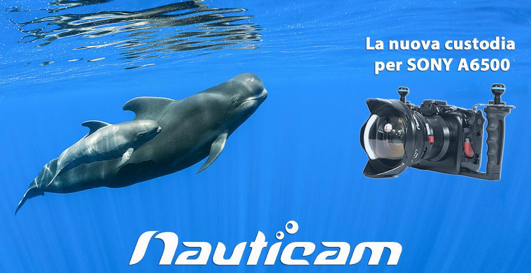 Novità dal mondo NAUTICAM, custodia NA-A6500 per SONY A6500 mirrorless