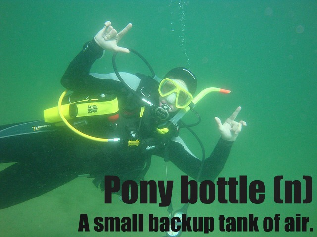 pony-bottle