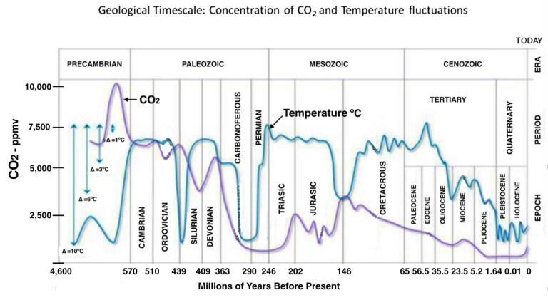 CO2 livelli nelle ere