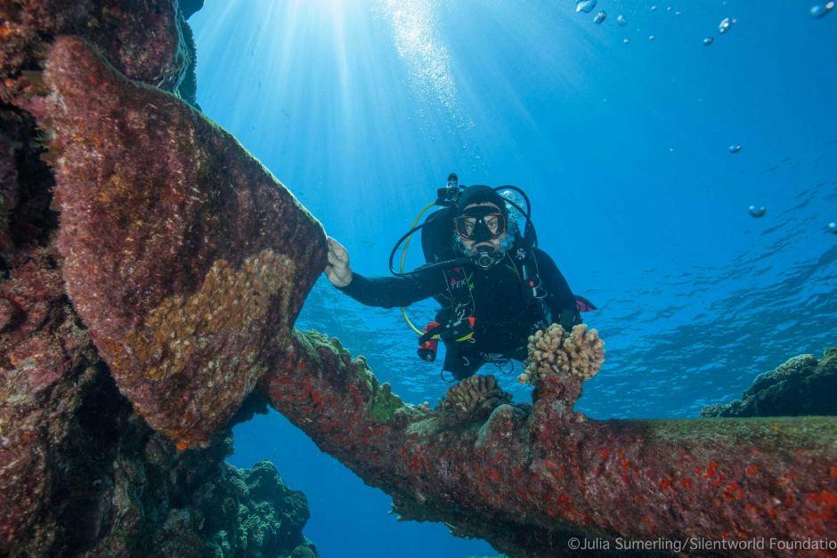 keen reef 1