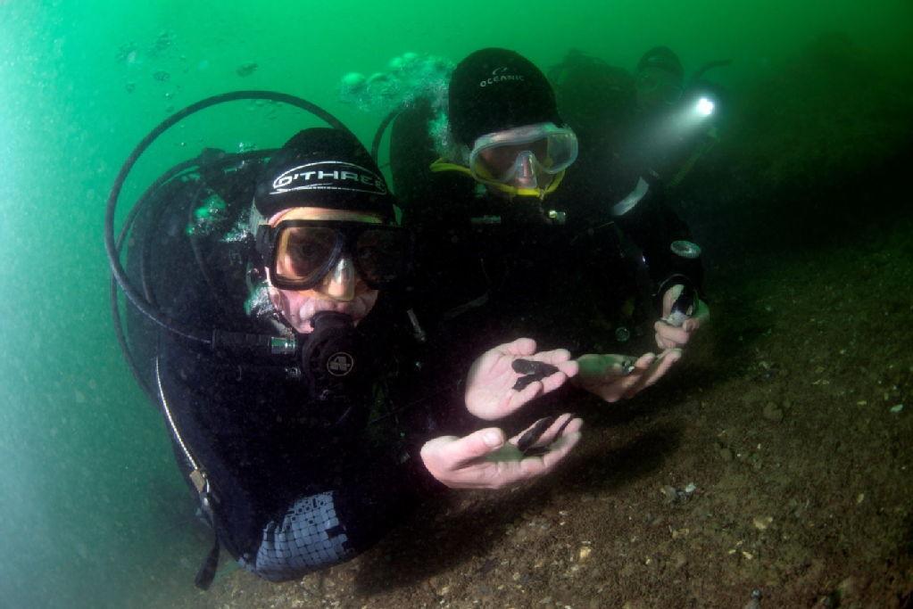 Incredibile scoperta dimostra contatti tra il continente europeo e l'Isola di Wight nel 6 millennio a.C.