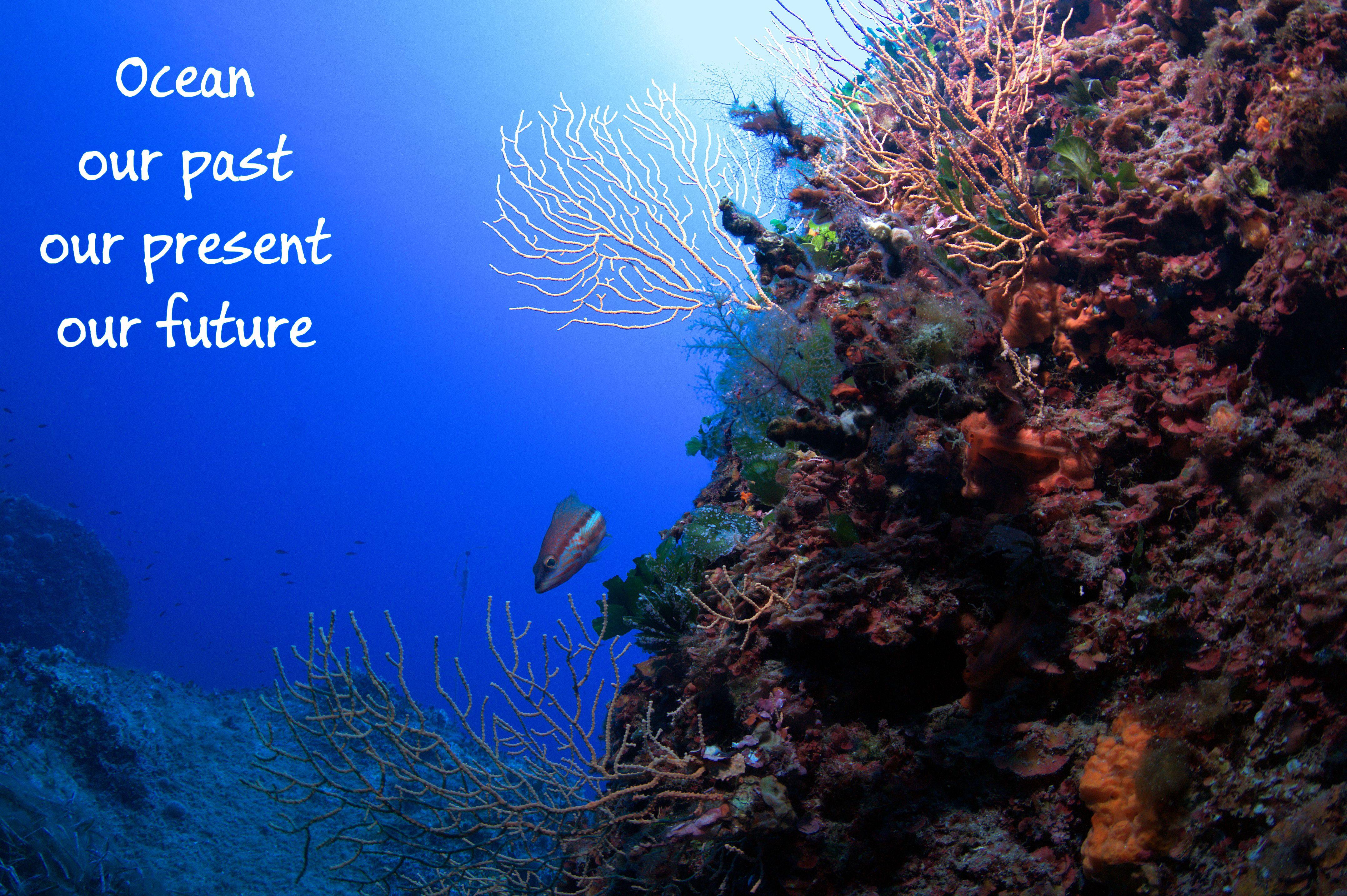 World Ocean Day  2017: un'occasione per parlare di sostenibilità ecologica contro le plastiche abbandonate nell'ambiente