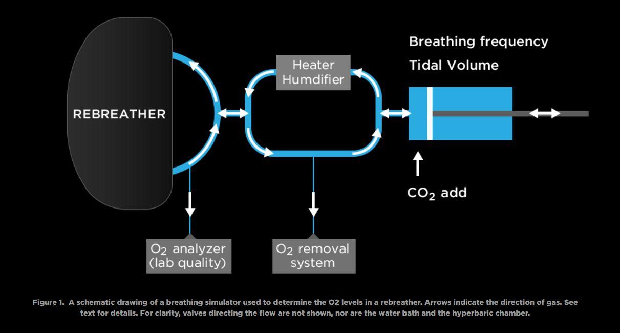 Controllo dei livelli di O2 in un Rebreather. Come funziona e come può essere verificato? di Dan Warkander – parte II