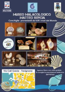 museo_malacologicofavignana-212x300
