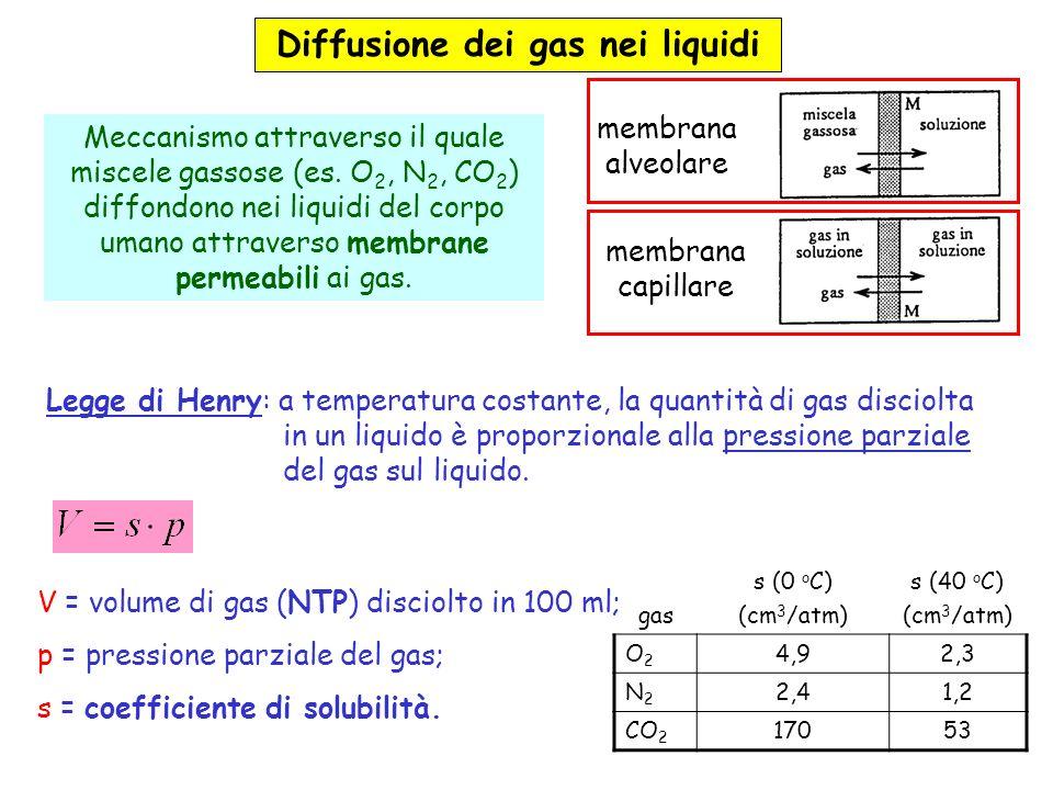 membrana alveolare. Meccanismo attraverso il quale miscele gassose (es. O2, N2, CO2) diffondono nei liquidi del corpo umano attraverso membrane permeabili ai gas. membrana capillare. Legge di Henry: a temperatura costante, la quantità di gas disciolta in un liquido è proporzionale alla pressione parziale del gas sul liquido. gas. s (0 oC) (cm3/atm) s (40 oC) O2. 4,9. 2,3. N2. 2,4. 1,2. CO V = volume di gas (NTP) disciolto in 100 ml; p = pressione parziale del gas; s = coefficiente di solubilità.