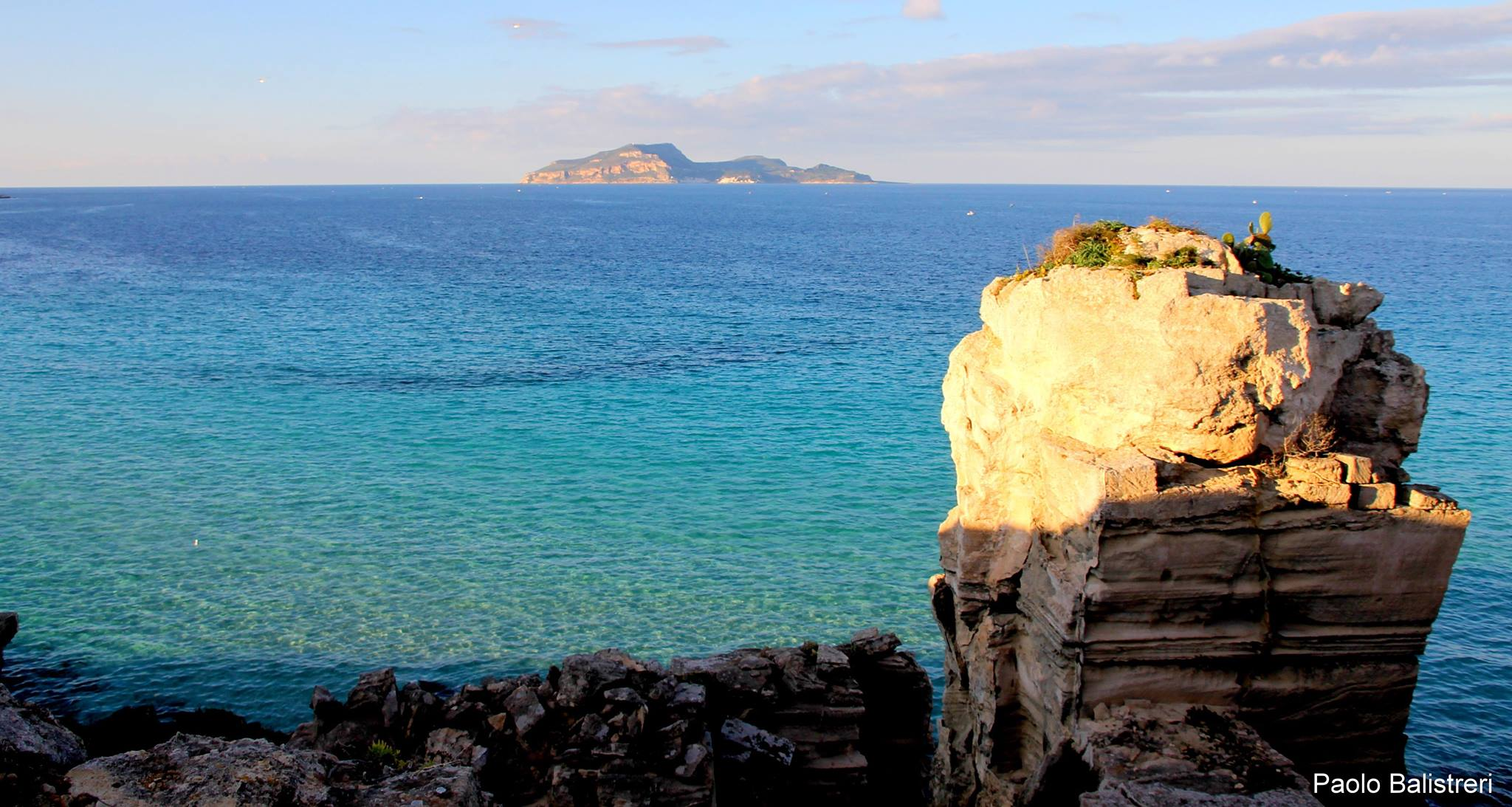 Spot. La biodiversità dei fondali dell'Isola di Favignana raccontata da Paolo Balistreri