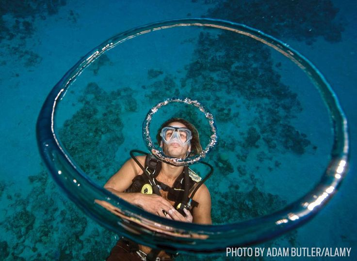 A5FHTF A diver blows bubble rings under the water in Sharm el Sheikh Egypt Photo Adam Butler