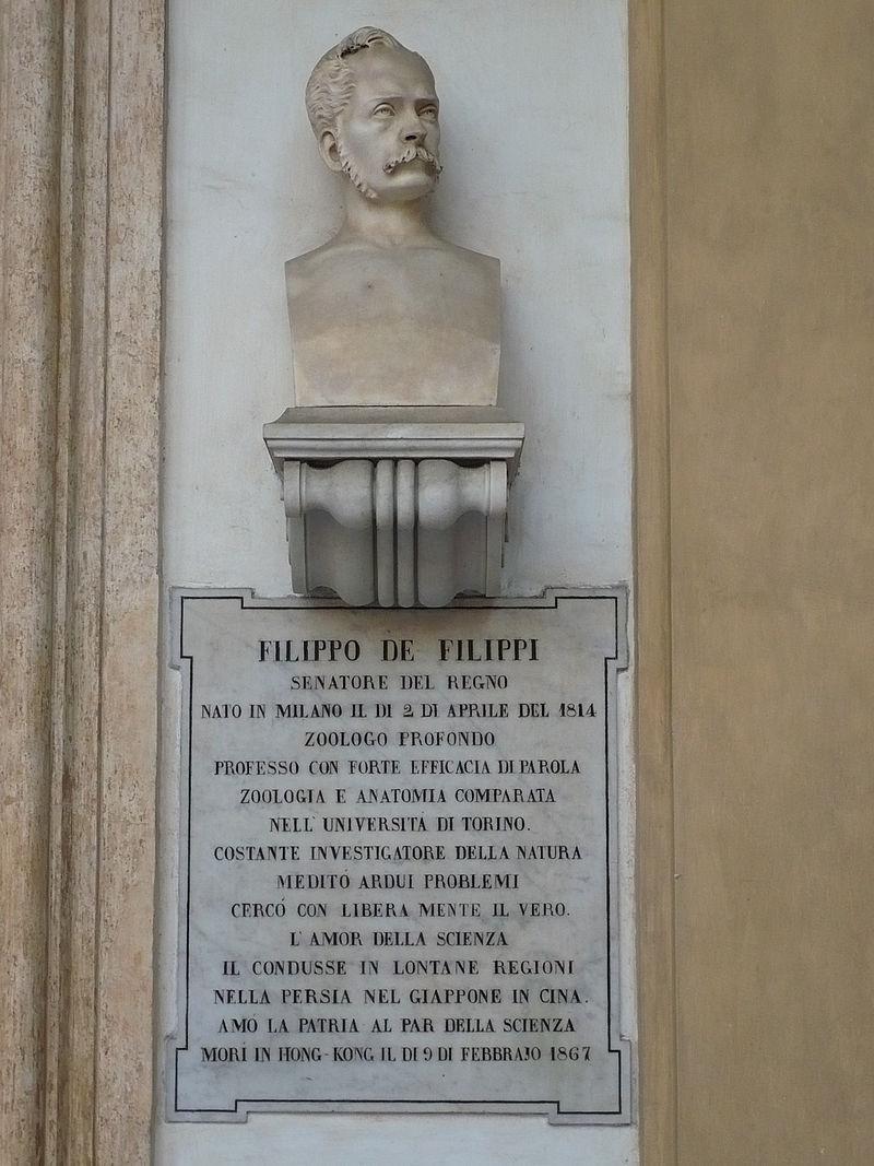 800px-Filippo_De_Filippi_Busto_Torino_Università