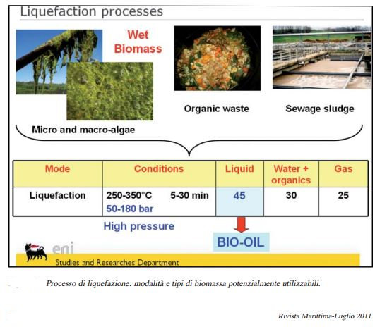 biomass mauro 1