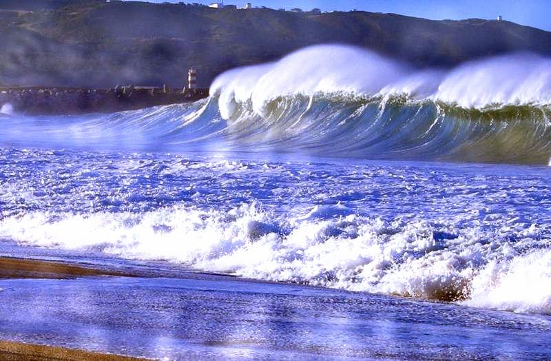 Conosciamo le onde del mare