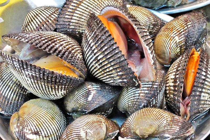 I molluschi: questi straordinari sconosciuti