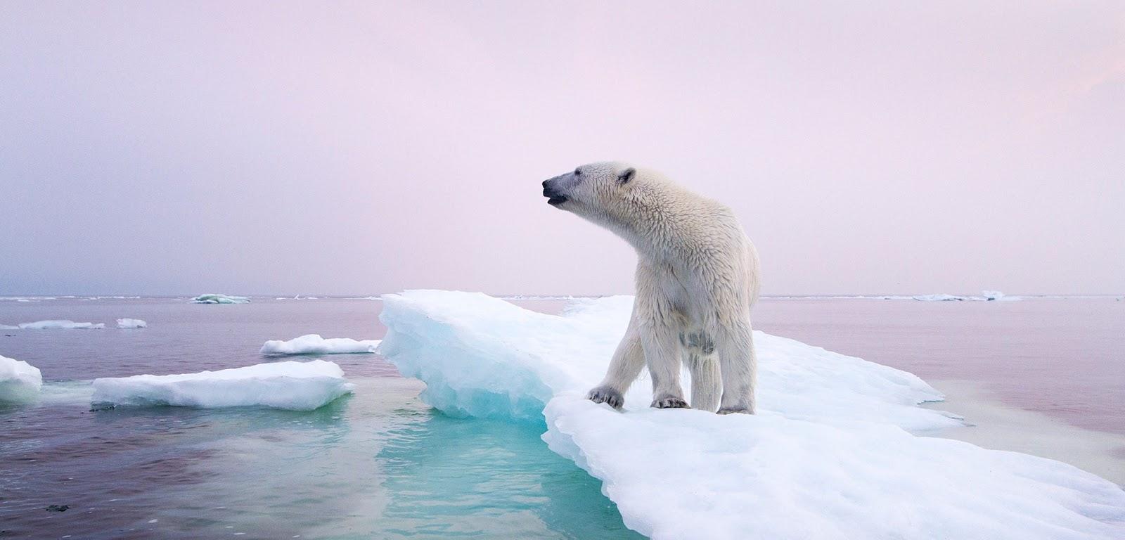 Emergenze ambientali: Clima, avanti con Parigi!