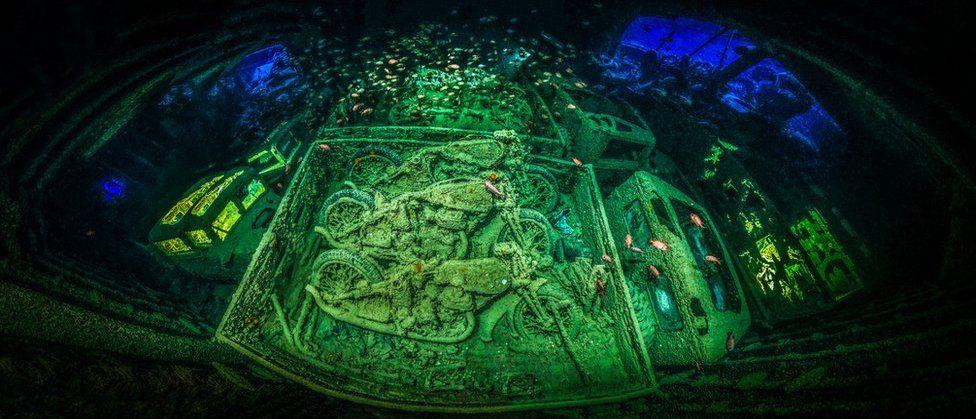 Fotografia: Tobias Friedrich, fotografo subacqueo dell'anno 2018