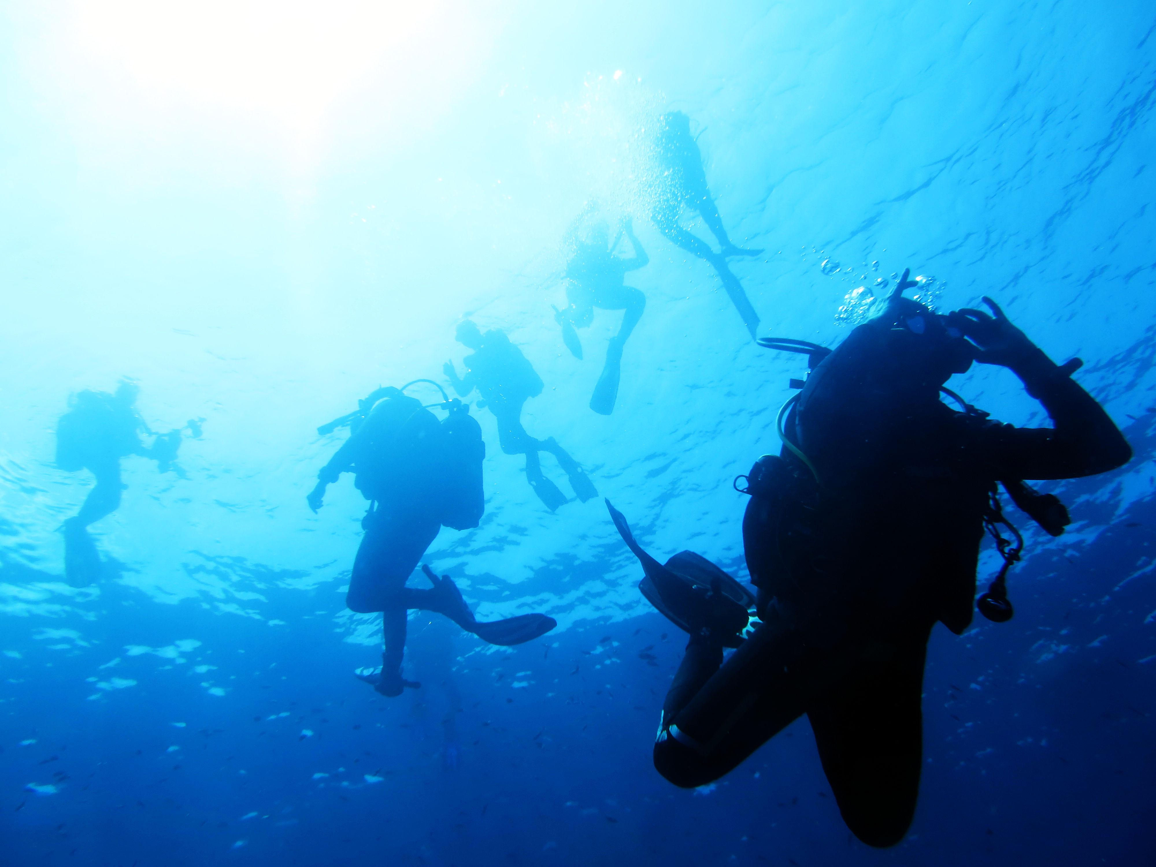 Didattica: Analisi dell'errore … applicazioni alla subacquea di Giorgio Caramanna