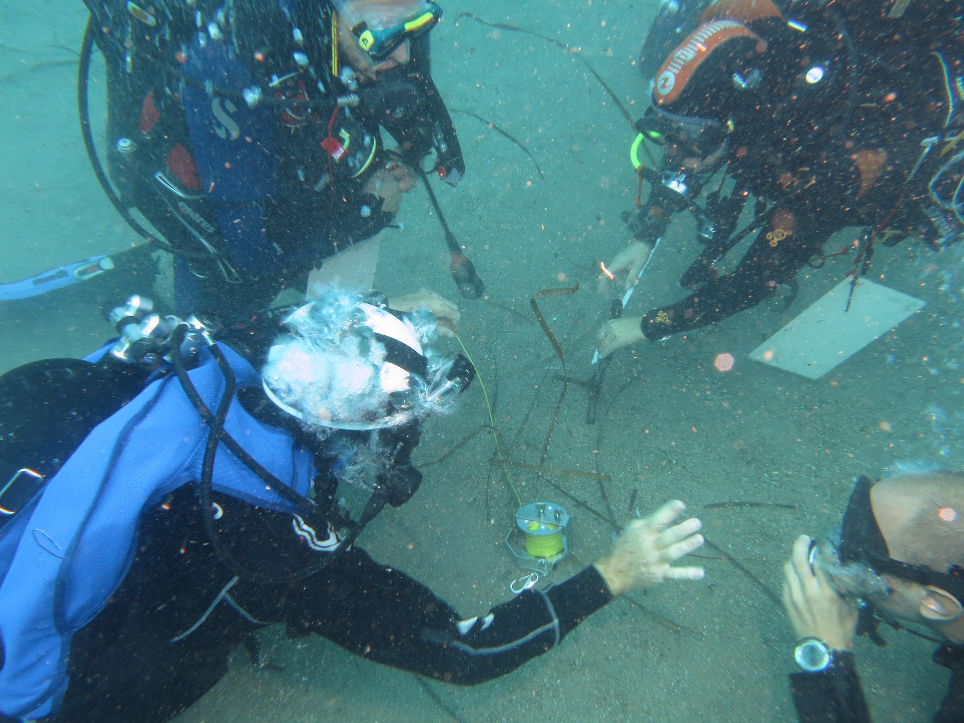 Leadership ed attività subacquea di Giorgio Caramanna