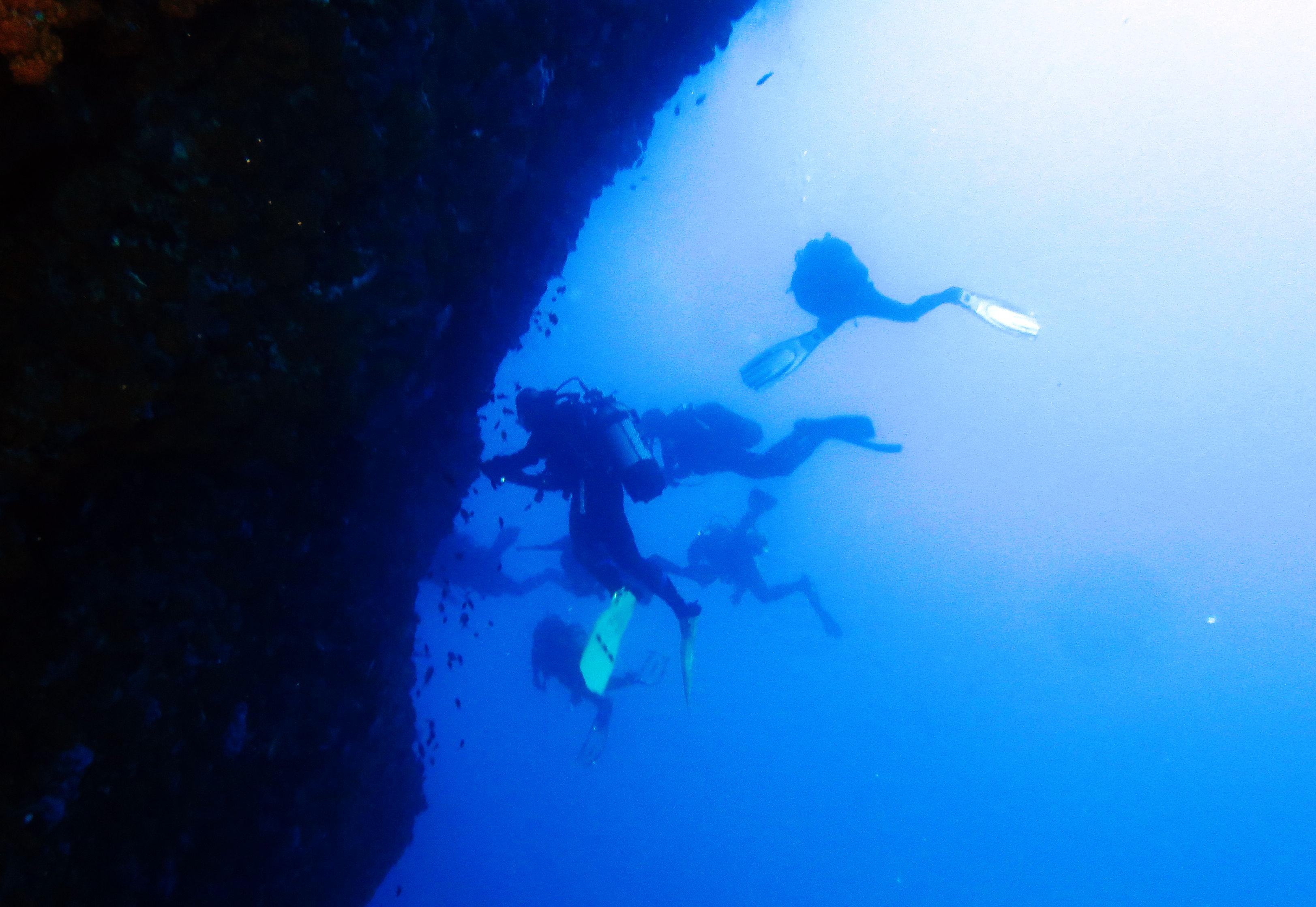 Teoria dell'organizzazione, un'applicazione per gruppi subacquei scientifici