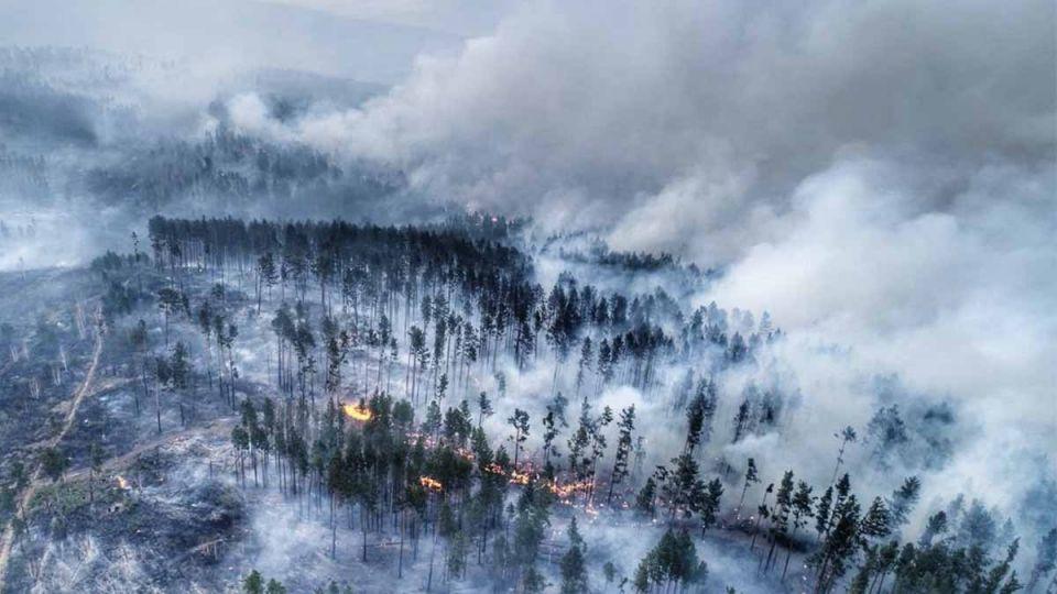 La Siberia in preda delle fiamme: un disastro ecologico che va oltre i confini della Russia
