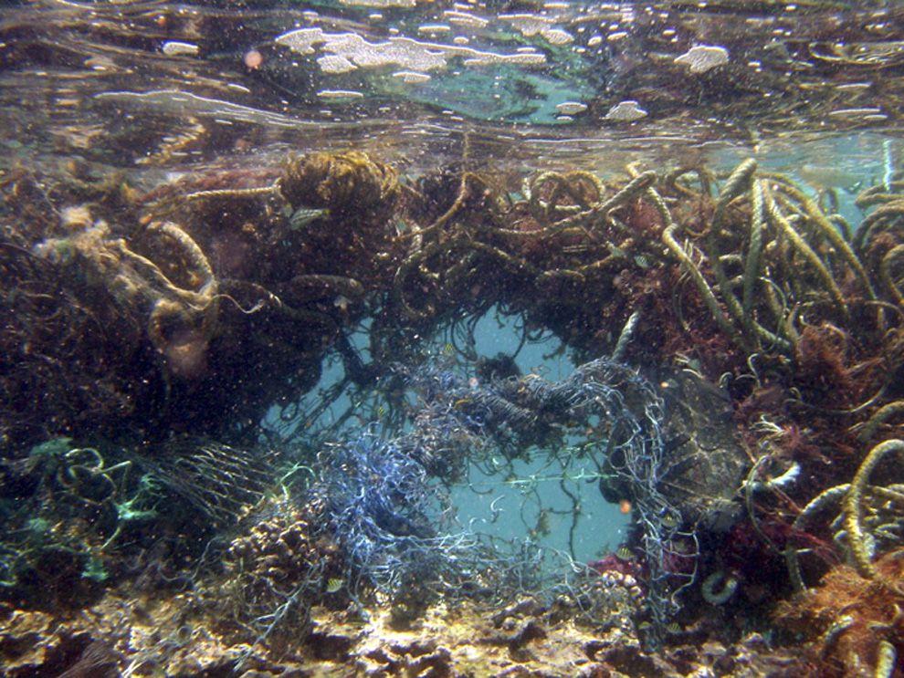 Il grande vortice dell'Oceano Pacifico sta accumulando sempre più rapidamente materiali plastici. Lo sospettavamo ma ora abbiamo la prova.