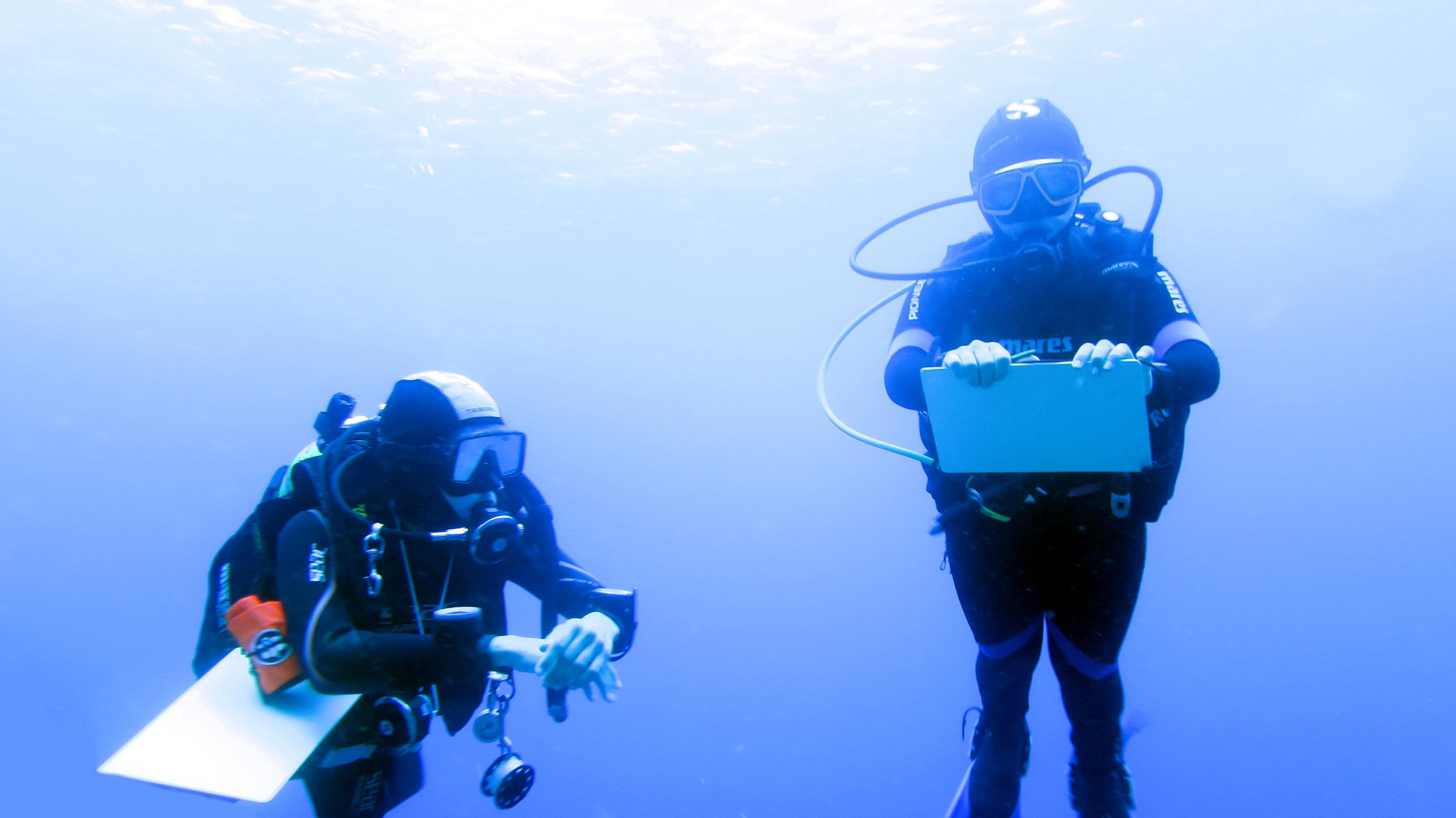 Come pianificare l'immersione subacquea