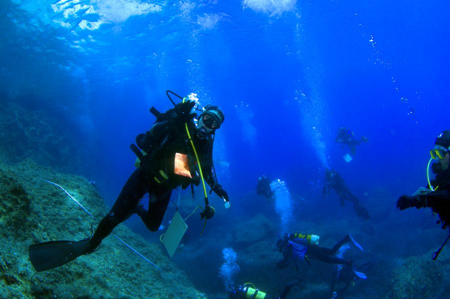L'importanza del turismo subacqueo di Luigi Piazzi