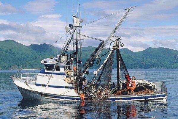 Questa immagine ha l'attributo alt vuoto; il nome del file è commercial-fishing-boat.jpg
