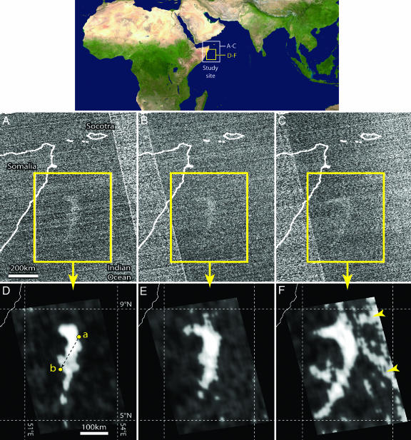 Questa immagine ha l'attributo alt vuoto; il nome del file è immagini-studio-milky-sea.jpg