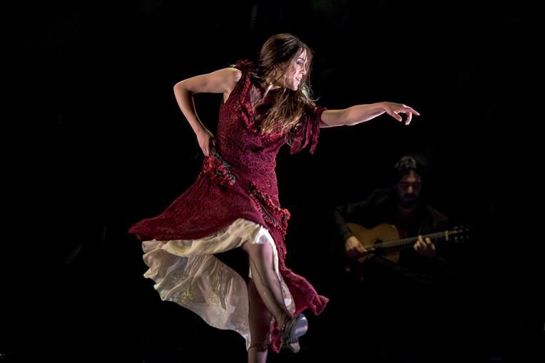 Questa immagine ha l'attributo alt vuoto; il nome del file è flamenco.jpg