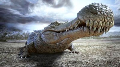 Questa immagine ha l'attributo alt vuoto; il nome del file è Sarcosuchus-dinosaurs-aquatic.jpg