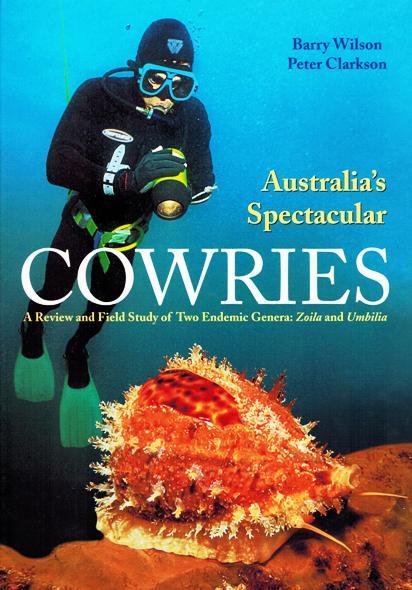 Questa immagine ha l'attributo alt vuoto; il nome del file è australiaspectacularcowries.jpg