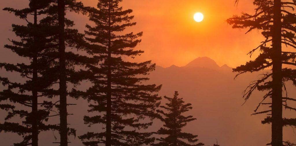 Questa immagine ha l'attributo alt vuoto; il nome del file è climate-change-hot-earth-1024x504.jpg