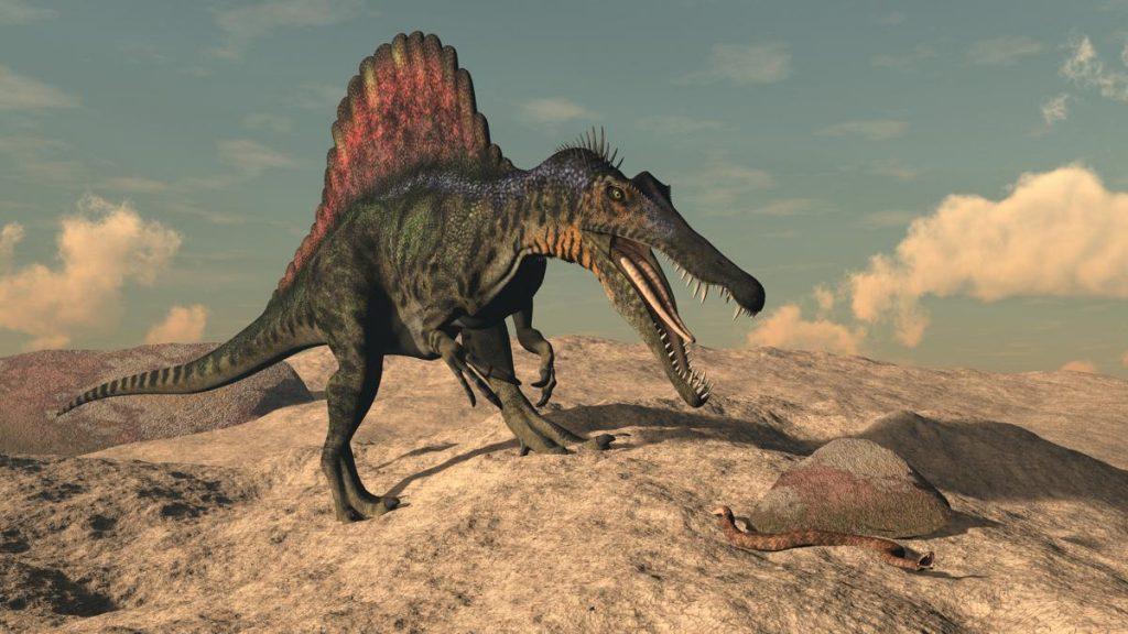Questa immagine ha l'attributo alt vuoto; il nome del file è spinosaurus-dinosaur-hunting-1024x576.jpg