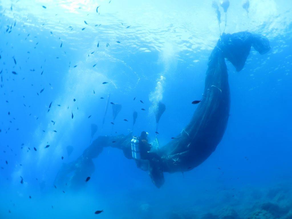 Questa immagine ha l'attributo alt vuoto; il nome del file è Healthy-seas-nets-recovery-Carmelo-Isgro.jpg