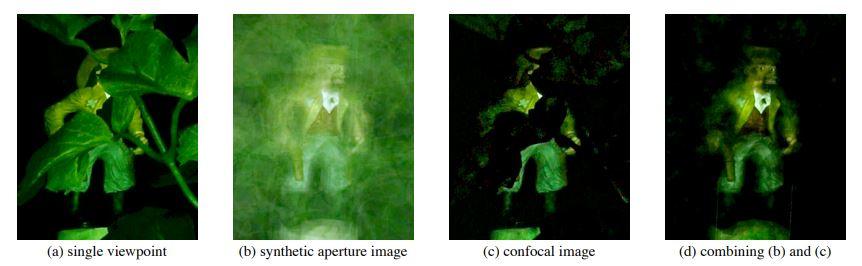 Questa immagine ha l'attributo alt vuoto; il nome del file è tecniche-confocali-subacquee.jpg
