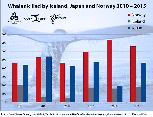 Questa immagine ha l'attributo alt vuoto; il nome del file è whaling-statistica.png