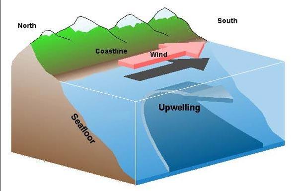 Questa immagine ha l'attributo alt vuoto; il nome del file è upwelling-cstiero.jpg