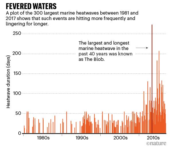 Questa immagine ha l'attributo alt vuoto; il nome del file è aumento-delle-onde-di-calore.png