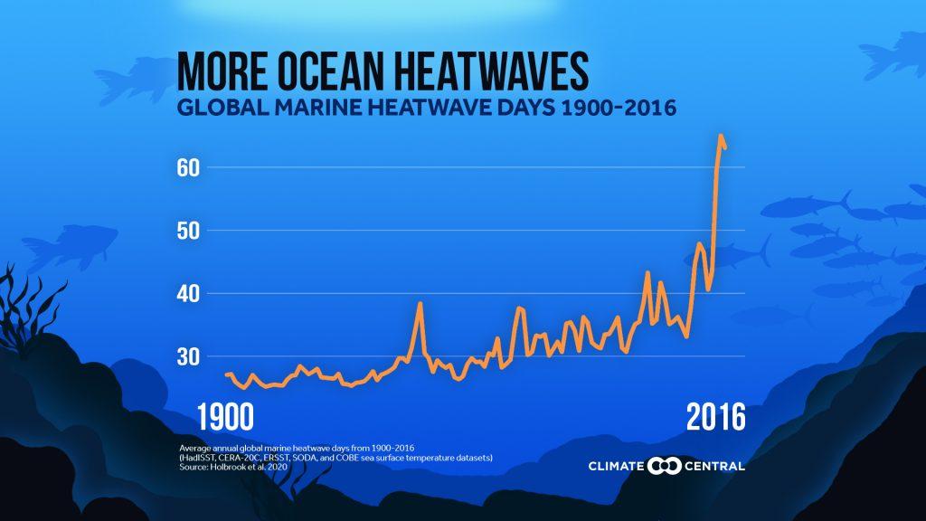 Questa immagine ha l'attributo alt vuoto; il nome del file è heat-ocean-wave-1024x576.jpg