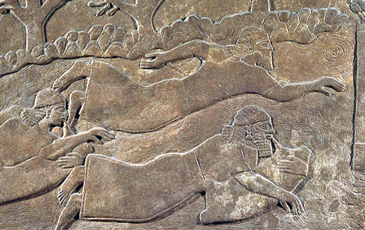Questa immagine ha l'attributo alt vuoto; il nome del file è assiri-dettaglio.png